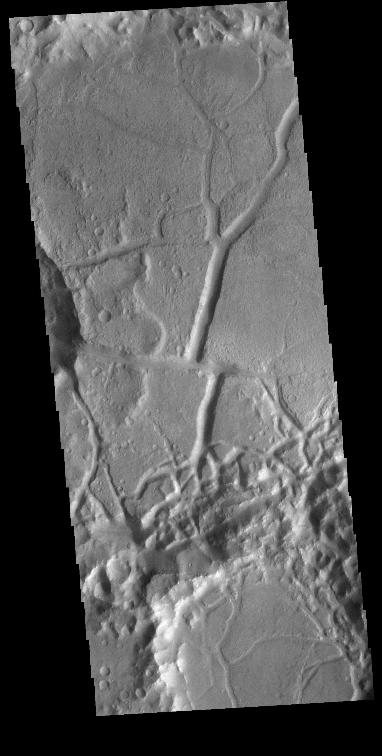 This image from NASAs Mars Odyssey shows part of the floor of an unnamed crater in Margaritifer Terra.