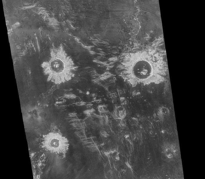 This mosaic from NASA's Magellan data is in the Lavinia region of Venus. Three large impact craters can be seen located in a region of fractured plains.