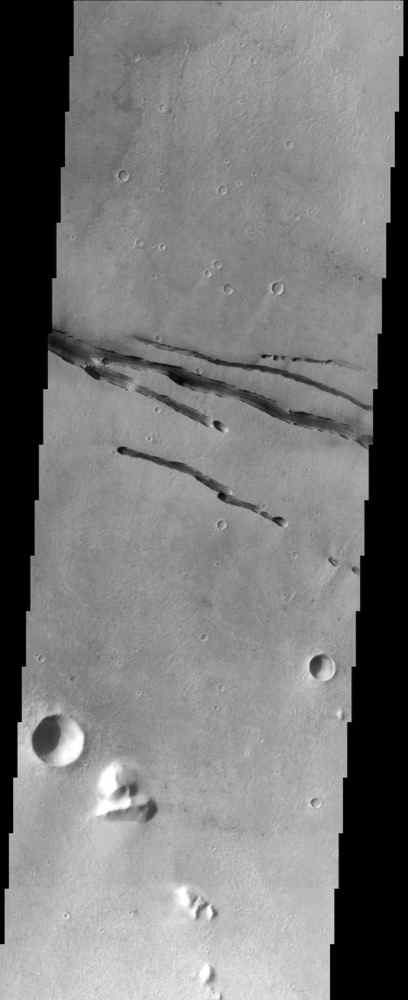 This image from NASA's Mars Odyssey spacecraft shows fractures within the volcanic plains south of Elysium Mons.