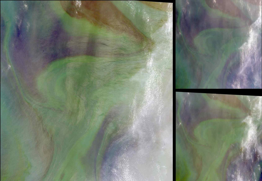 In the Arabian Sea, sunlight and nutrients has fueled a startling occurrence of colorful phytoplankton and bacterial assemblages, which is captured in these natural color images from NASA's Terra spacecraft October 2, 2004.