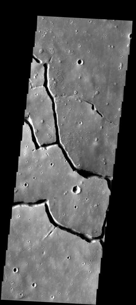 In this image from NASA's Mars Odyssey spacecraft showing a location about 1,000 km (620 miles) west of the massive Elysium volcanic complex, a system of branching troughs shows a continuum of features that provides clues to its origin.