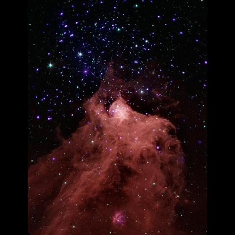 This composite image, combining data from NASA's Chandra X-ray Observatory and Spitzer Space Telescope shows the star-forming cloud Cepheus B, located in our Milky Way galaxy about 2,400 light years from Earth