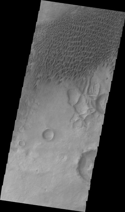 This image from NASA's 2001 Mars Odyssey shows a sand sheet with dune forms located northeast of Douglass Crater.