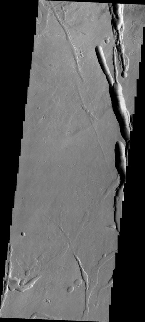 This image of the southern flank of Ascraeus Mons, taken by NASA's 2001 Mars Odyssey spacecraft, shows a small sample of collapse features that are common in the area.