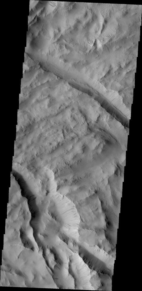 Dark slope streaks are found throughout Lycus Sulci in this image taken by NASA's 2001 Mars Odyssey spacecraft.