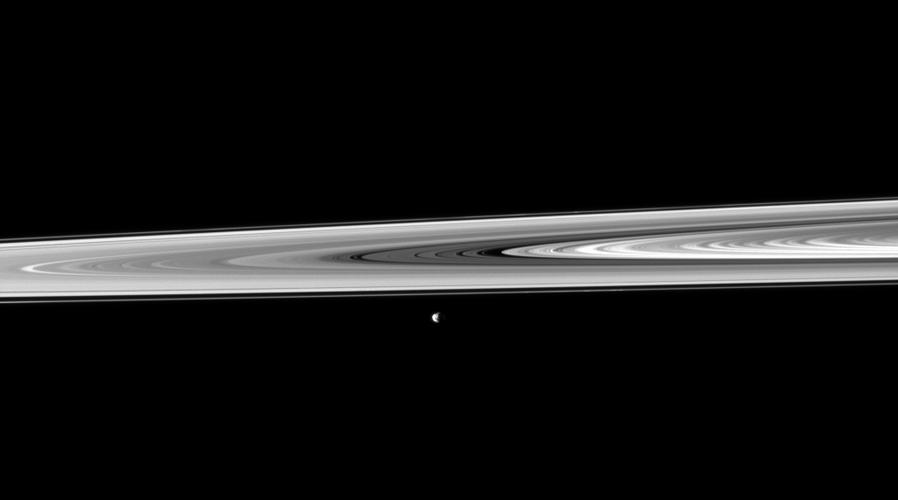 Janus, passing between the rings and NASA's Cassini orbiter, poses for a snapshot taken by the spacecraft's narrow-angle camera.