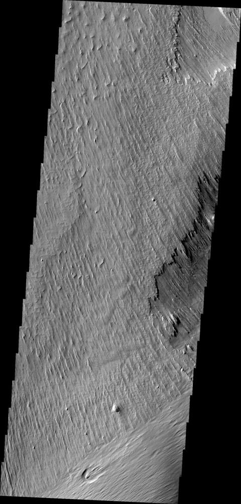 Wind is one of a handful of active processes on Mars today. This image taken by NASA's 2001 Mars Odyssey of Memnonia Sulci demonstrates the power of wind in eroding and shaping the surface.
