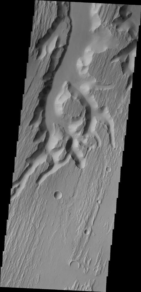 This image from NASA's 2001 Mars Odyssey shows a small portion of the complex channel system, Kasei Valles. In this image, secondary channeling has cut down deeper into the main channel.