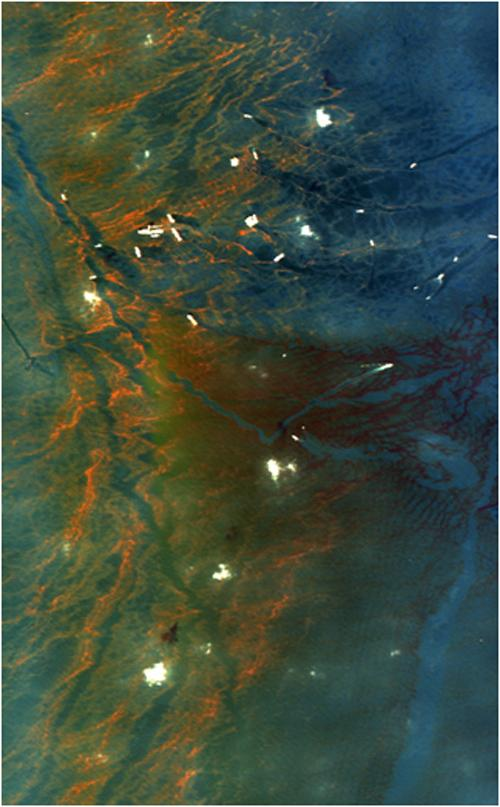 This image from NASA's Airborne Visible/Infrared Imaging Spectrometer instrument (AVIRIS) was collected on May 17, 2010, over the site of the Deepwater Horizon BP oil spill disaster. In the image, crude oil on the surface appears orange to brown.
