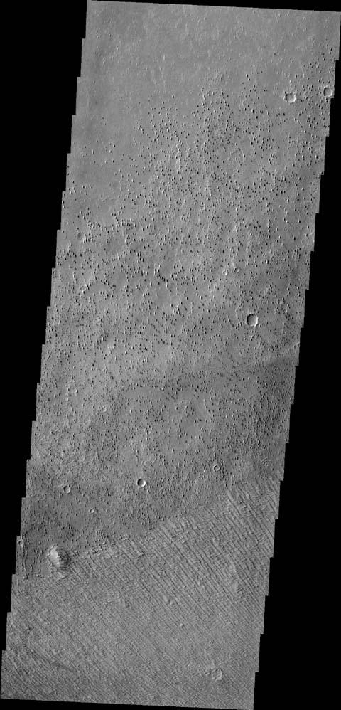 Located on the margin of Zephyria Planum, this image from NASA's 2001 Mars Odyssey shows the effect the wind has had on the surface of Mars. Loose materials have been removed and semi-consolidated materials have been eroded into narrow hill forms.