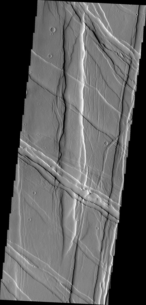 NASA's Mars Odyssey captured this image of Ulysses Fossae, located in the Tharsis Volcanic region. Cross cutting tectonic fractures indicate that this region underwent stresses in multiple directions.