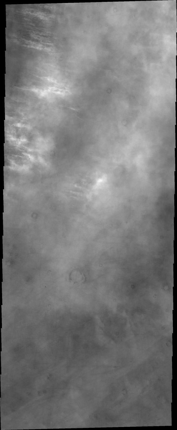 The bright features in this image captured by NASA's Mars Odyssey are the tops of clouds north of Alba Mons.