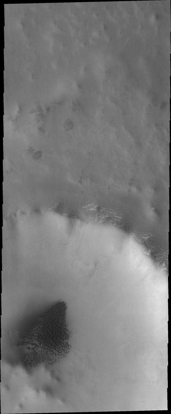 Dunes cover the floor of this unnamed crater in the northern lowlands in this image captured by NASA's Mars Odyssey.