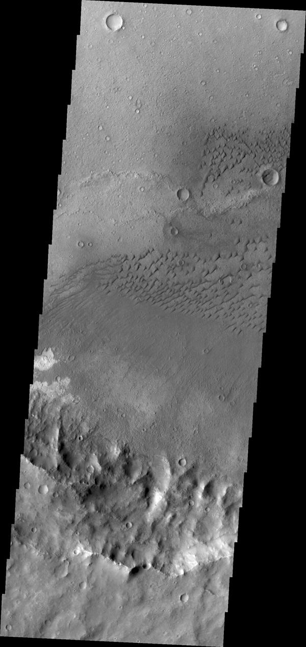 These dunes are located on the floor of an unnamed crater in Terra Cimmeria in this image captured by NASA's Mars Odyssey spacecraft.