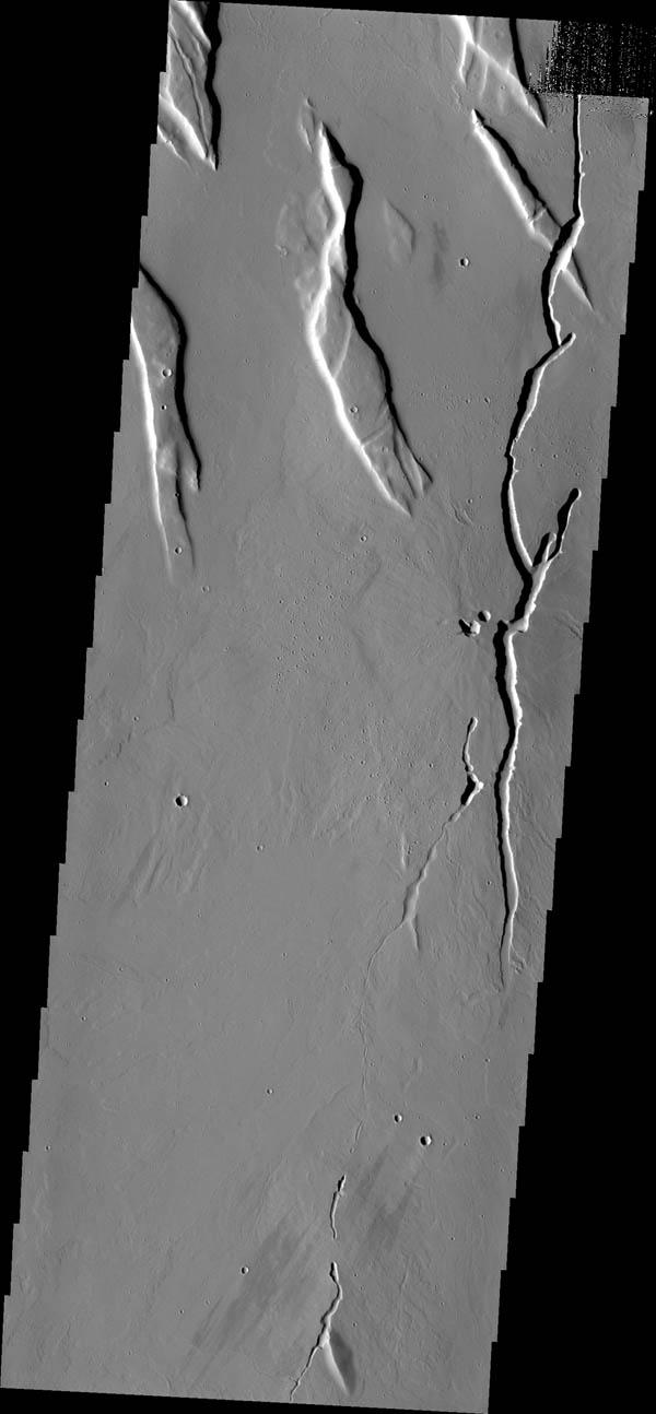 The collapse features in this image captured by NASA's Mars Odyssey are located in the volcanic flows south of Alba Mons.