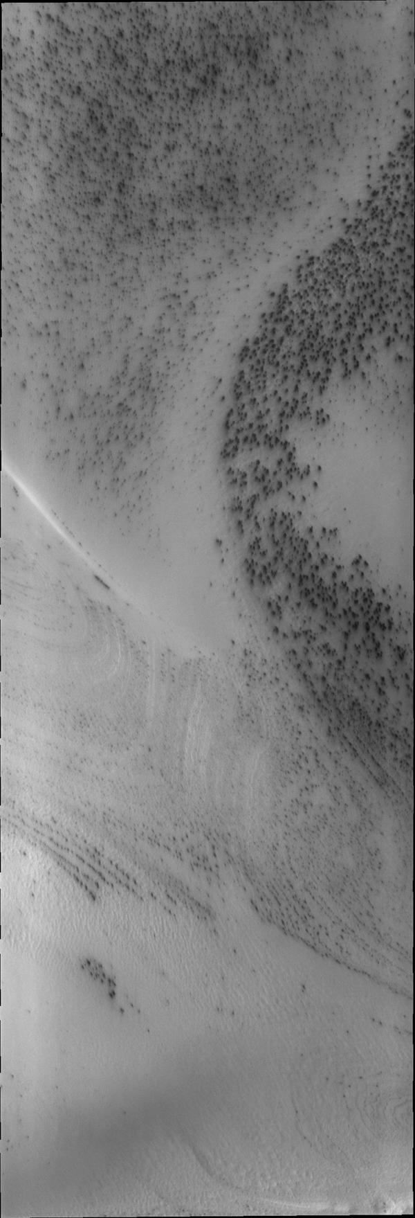 Dark spots appear on the south polar ice cap just after the sun starts to shine in this image captured by NASA's Mars Odyssey.