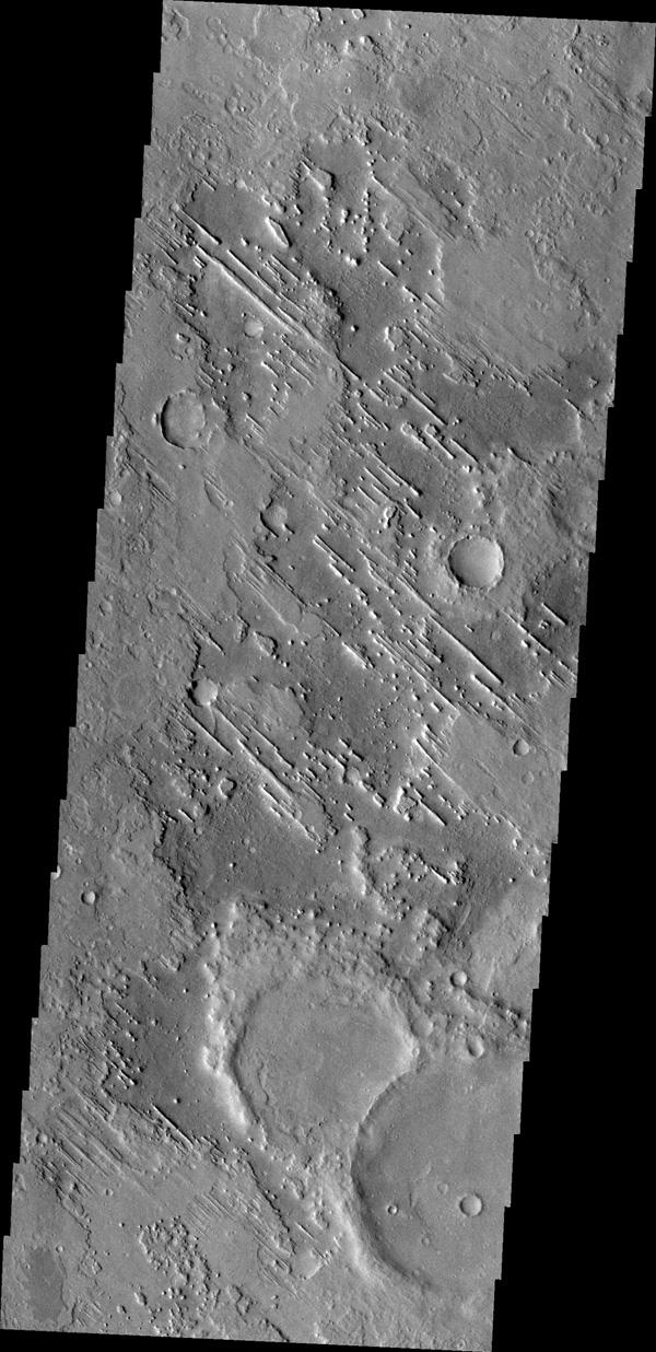 Linear ridges are located in the topographic lows just north of Meridiani Planum in this image from NASA's Mars Odyssey.