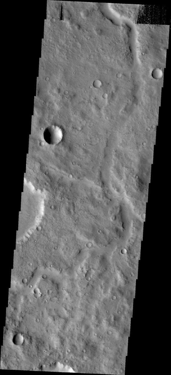 This subtle, unnamed channel is located in northern Terra Cimmeria as seen by NASA's Mars Odyssey.