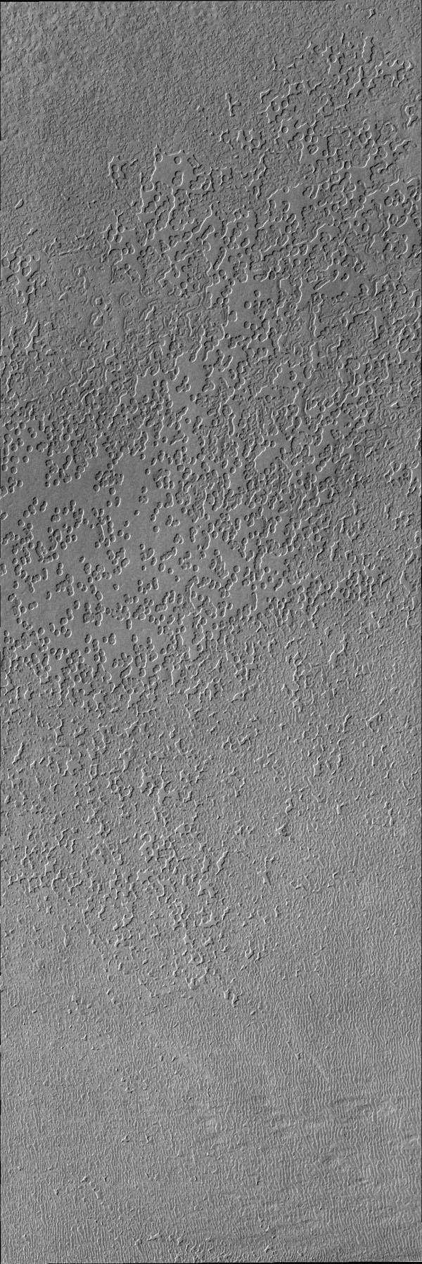 This image from NASA's Mars Odyssey is of the south polar surface. These pits appear to coalesce and reveal the surface below.