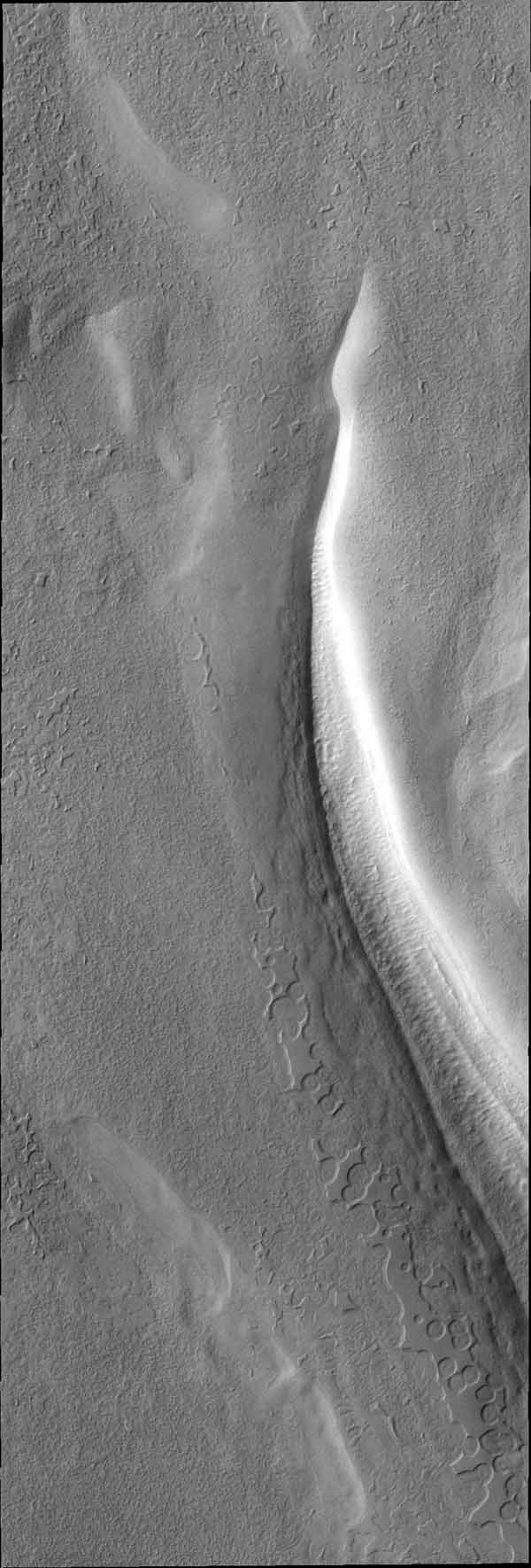 This image from NASA's Mars Odyssey is of the south polar cap shows the tip of a trough and the surface surrounding it.