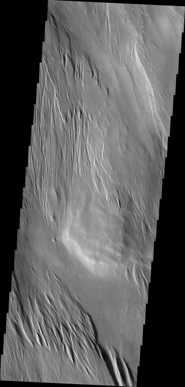 Centuries of wind action have sculpted the surface materials shown this image from NASA's 2001 Mars Odyssey.