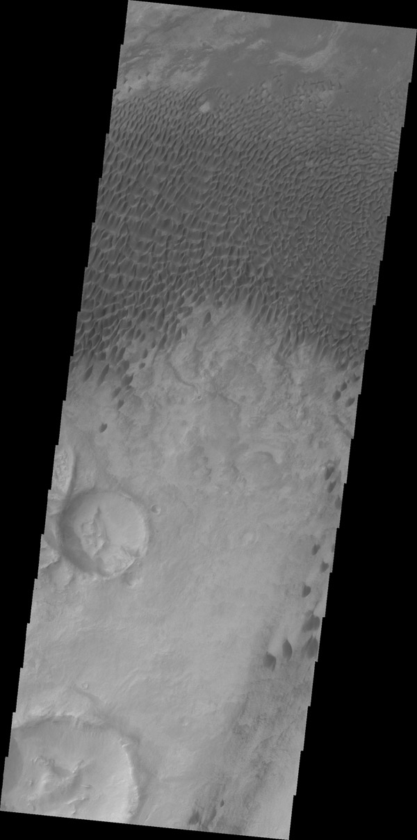 These dunes are located in a low plains region north of Aonia Planum as seen by NASA's 2001 Mars Odyssey spacecraft.