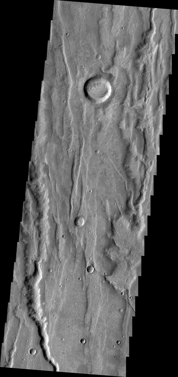 The depressions in this image captured by NASA's 2001 Mars Odyssey spacecraft are part of Coracis Fossae, part of the highlands south of Solis Planum.