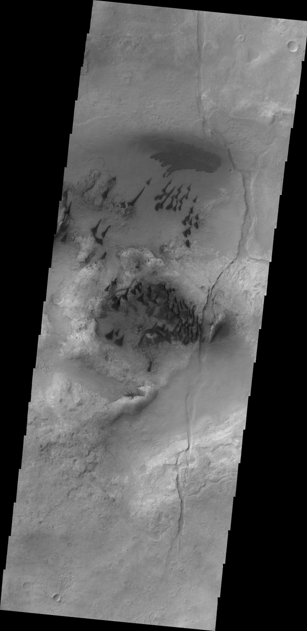 The small, individual dunes in this image captured by NASA's 2001 Mars Odyssey spacecraft are located in an unnamed crater in Noachis Terra.