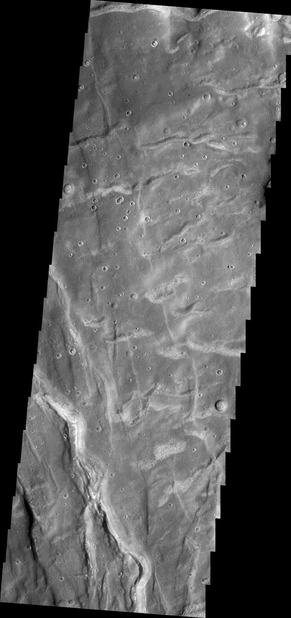 The fractures in this image captured by NASA's 2001 Mars Odyssey spacecraft are part of Claritas Fossae. Note the small, bright dunes in the deep furrow on the bottom left of the image.