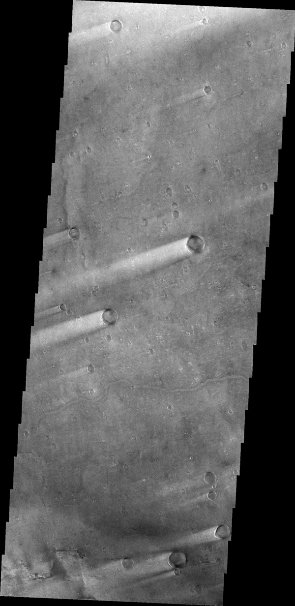 This image of windstreaks from NASA's 2001 Mars Odyssey spacecraft indicates winds from the ENE in the region of Syrtis Major Planum.