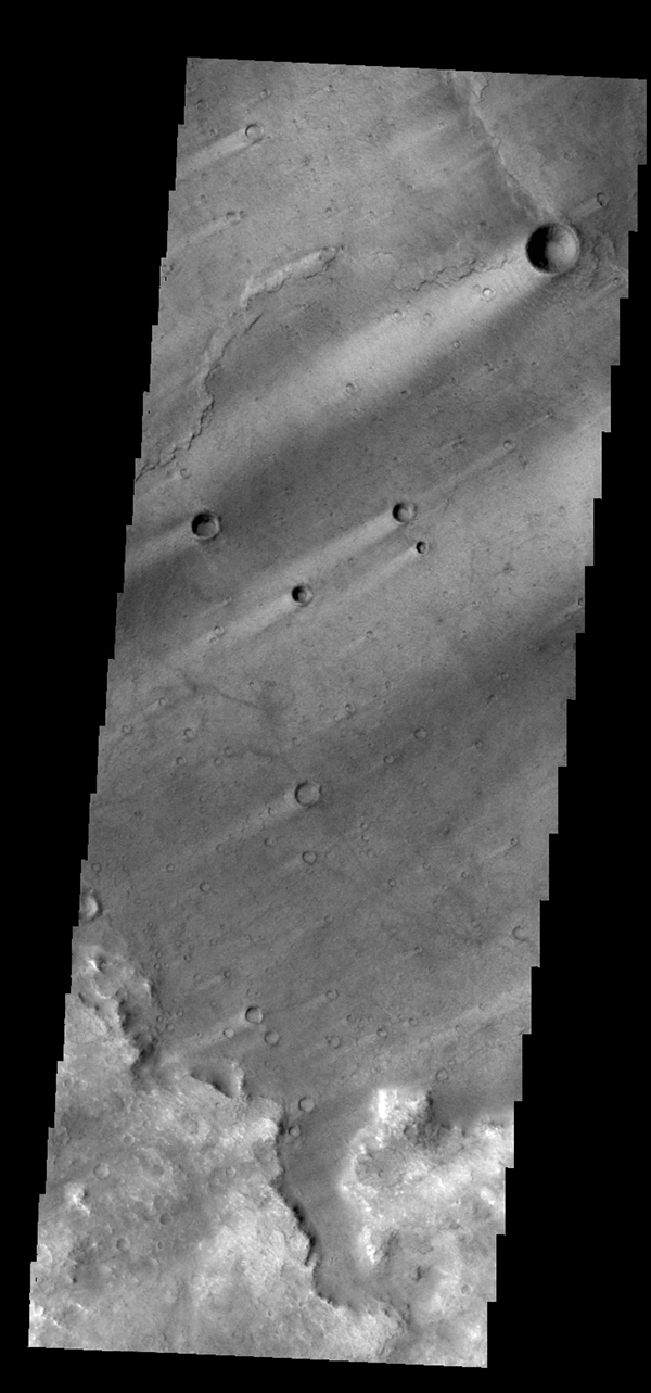 Windstreaks are common in Syrtis Major Planum as seen in this image from NASA's 2001 Mars Odyssey spacecraft.
