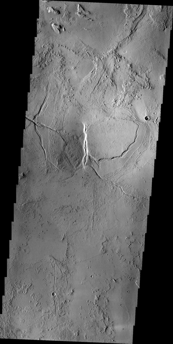 Arcuate and linear fractures cut the volcanic materials of Echus Montes in this image captured by NASA's 2001 Mars Odyssey spacecraft.