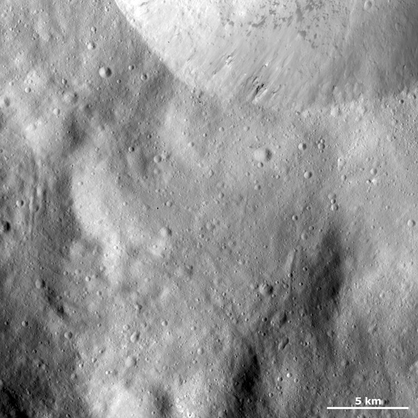 This image from NASA's Dawn spacecraft shows part of the sharp, fresh rim of a large crater on asteroid Vesta. There is some bright material slumping towards the center of this crater but this is mostly overshadowed by the dark material.