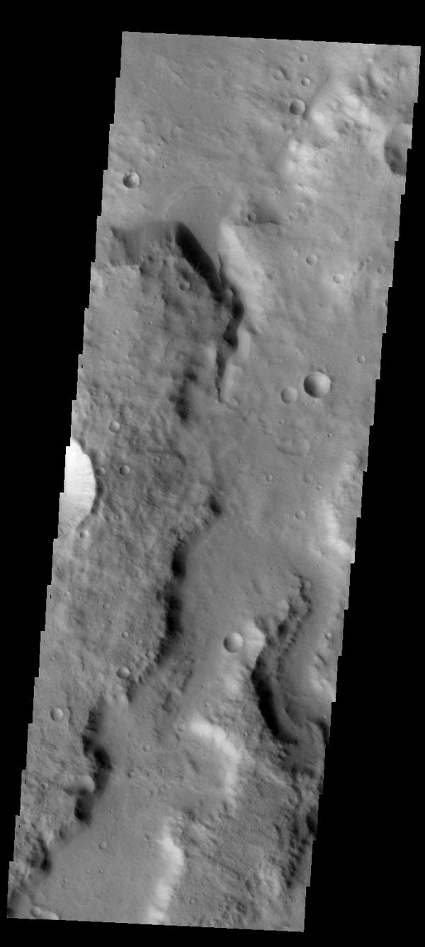 A small fan-shaped delta is located where a channel meets the floor of this unnamed crater in Terra Cimmeria, as shown in this image from NASA's 2001 Mars Odyssey spacecraft.