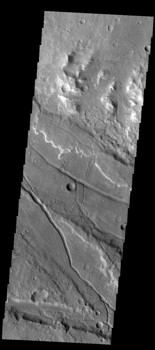 This image captured by NASA's 2001 Mars Odyssey spacecraft shows the complex region where Ladon Valles enters a topographic low in Margaritifer Terra.