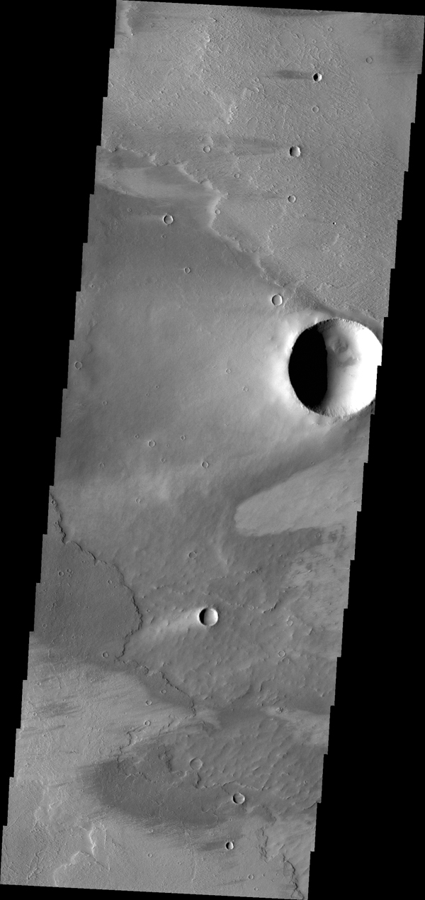 The windstreaks in this image from NASA's 2001 Mars Odyssey spacecraft are located on the volcanic plains of Daedalia Planum.