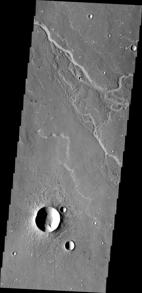 The unnamed channels in this image from NASA's 2001 Mars Odyssey spacecraft are located southeast of Albor Tholus.
