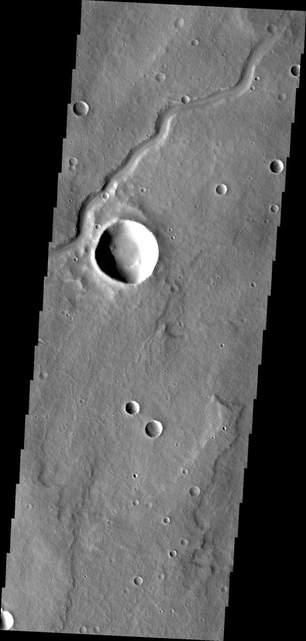 This image from NASA's 2001 Mars Odyssey spacecraft shows a portion of Dittaino Valles.