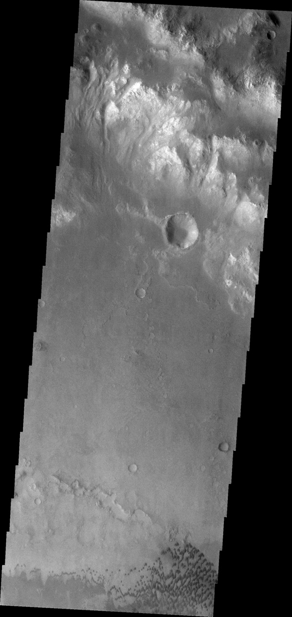 The small dark dunes in this image captured by NASA's 2001 Mars Odyssey spacecraft are located on the floor of Holden Crater.