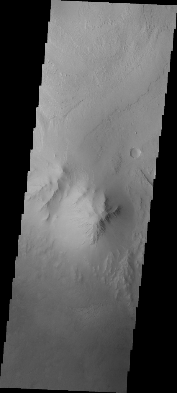 This image from NASA's Mars Odyssey spacecraft shows the highest elevation of layered deposit occurs at the top, but just south of the center of the image is a peak that does not appear to be layered and is eroding differently than the rest of Mt. Sharp.