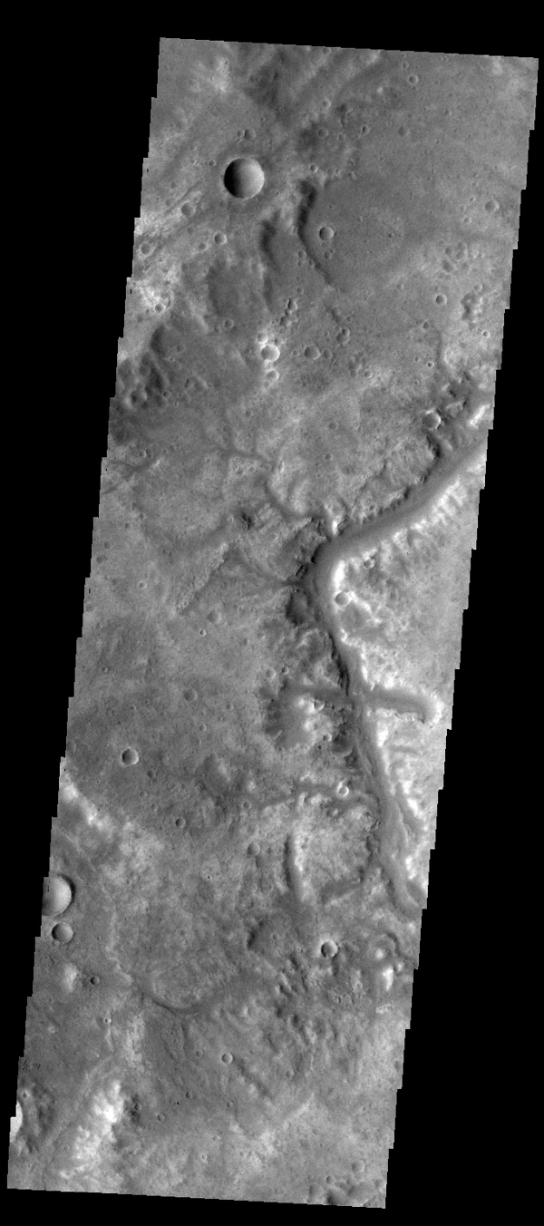 This image from NASA's Mars Odyssey spacecraft shows a small section of Samara Valles.