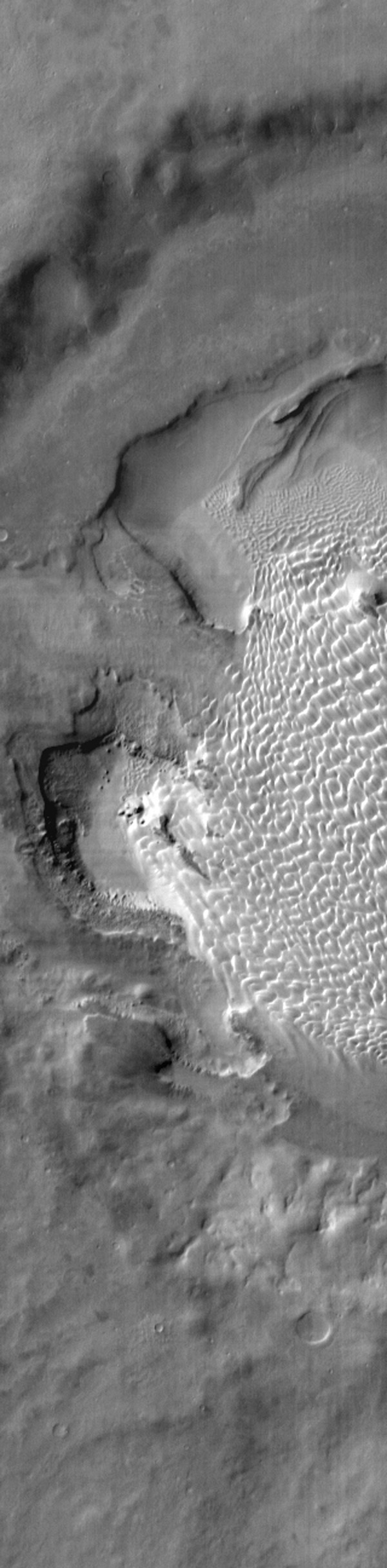 This daytime IR image from shows NASA's 2001 Mars Odyssey spacecraft part of the dune field on the floor of Rabe Crater. The dunes show up as brighter than the surrounding materials because they are warmer.
