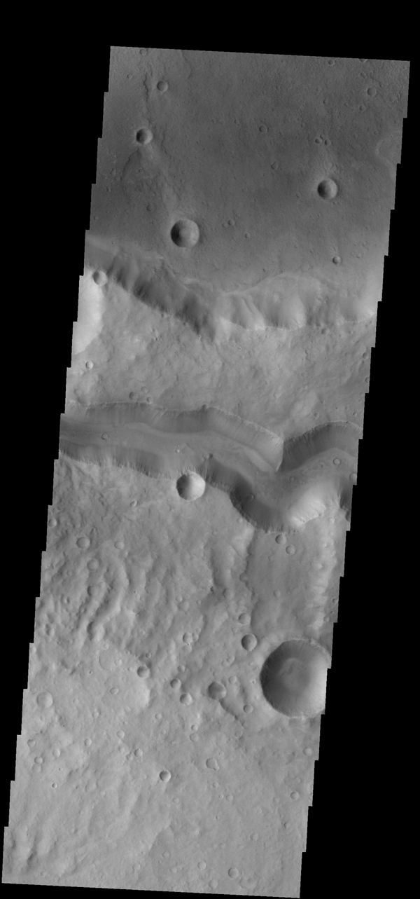 This VIS image from NASA's 2001 Mars Odyssey spacecraft shows Tinto Vallis (middle of image) and Palos Crater (top of image).