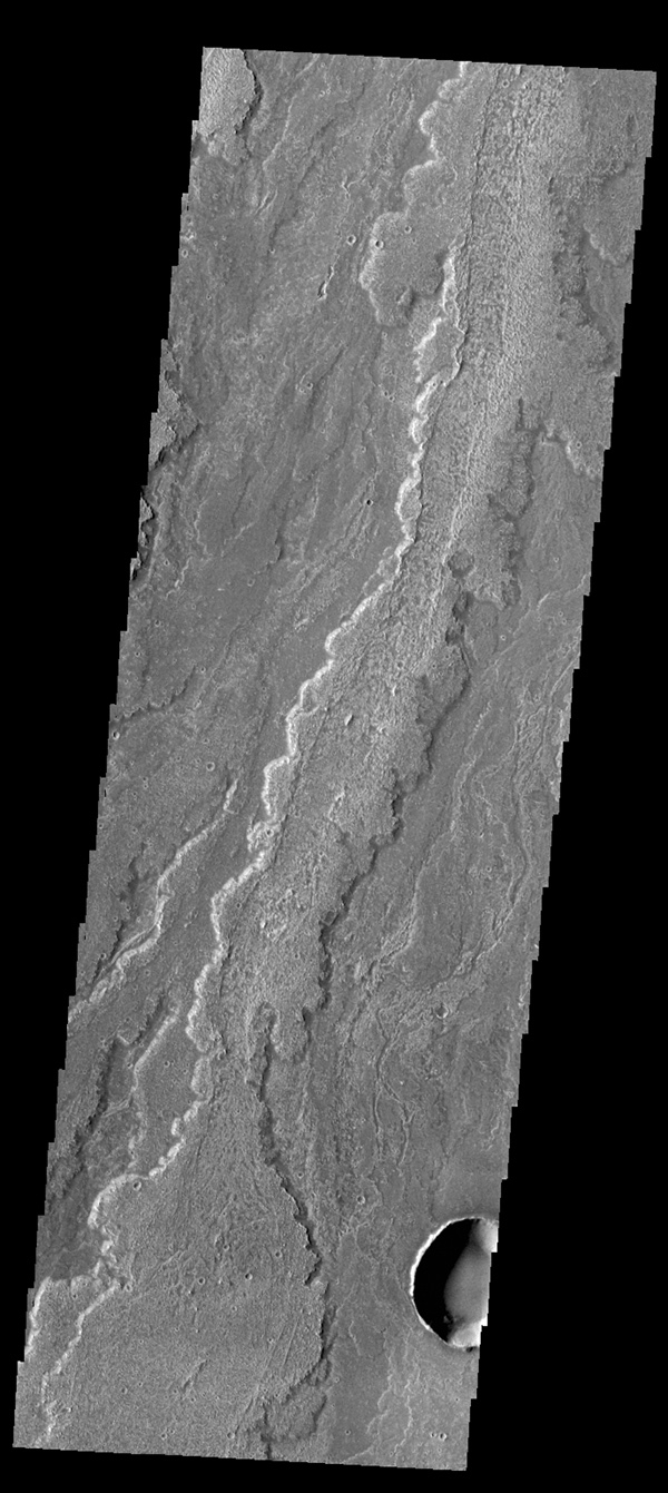 This image captured by NASA's 2001 Mars Odyssey spacecraft shows part of the extensive lava flows that comprise Daedalia Planum.