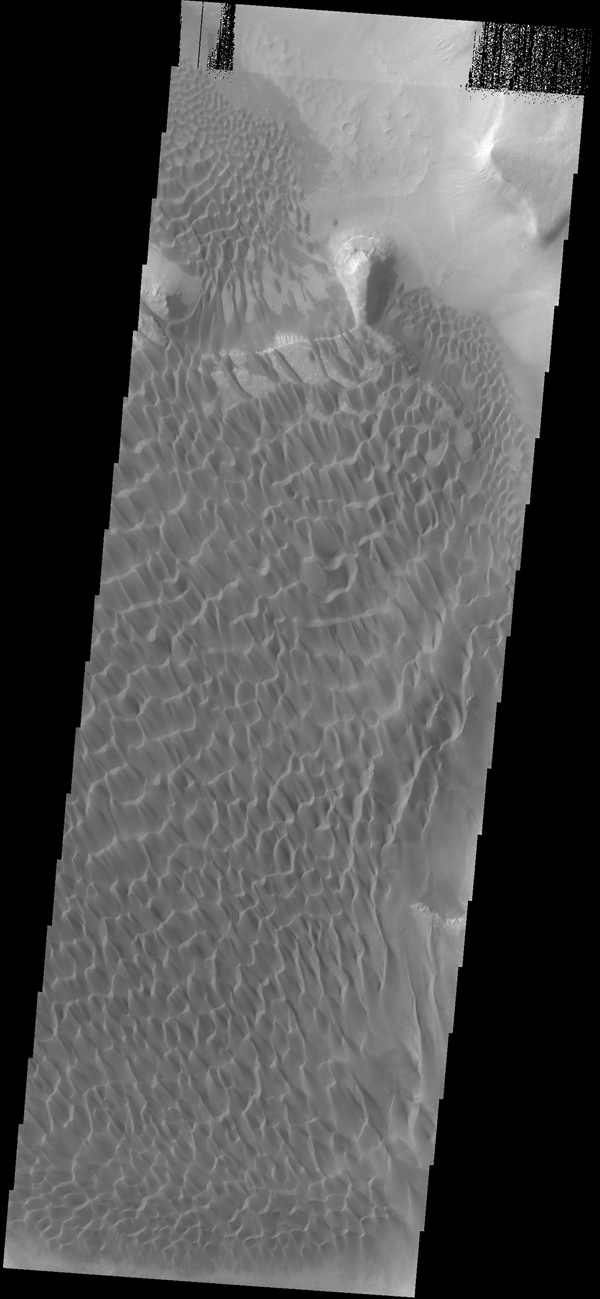 This image captured by NASA's 2001 Mars Odyssey spacecraft shows part of the dune field located on the floor of Rabe Crater.