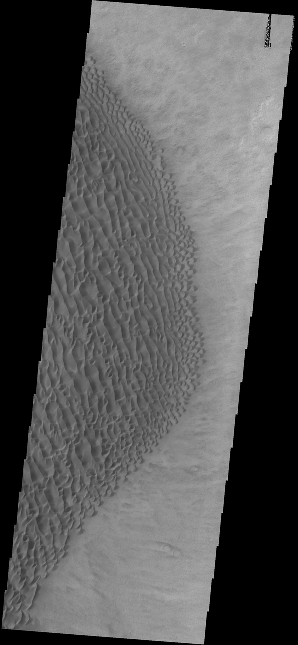 This image captured by NASA's 2001 Mars Odyssey spacecraft shows part of the dune field on the floor of Proctor Crater.