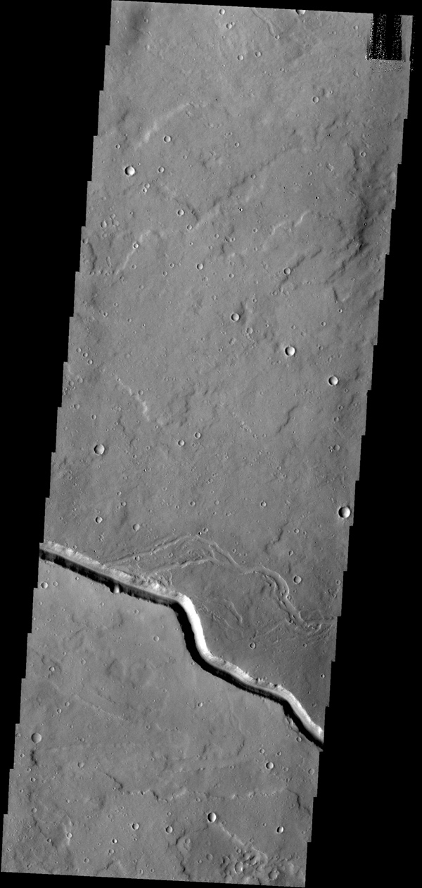The channel shown here is part of a large system of depressions located on the eastern side of the Elysium Mons volcanic complex. The depression in this image from NASA's 2001 Mars Odyssey spacecraft is located just south of Albor Tholus.