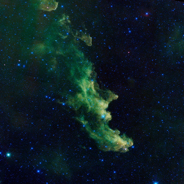 An infrared portrait of the Witch Head nebula from NASA's Wide-field Infrared Survey Explorer, or WISE, shows billowy clouds where new stars are brewing.