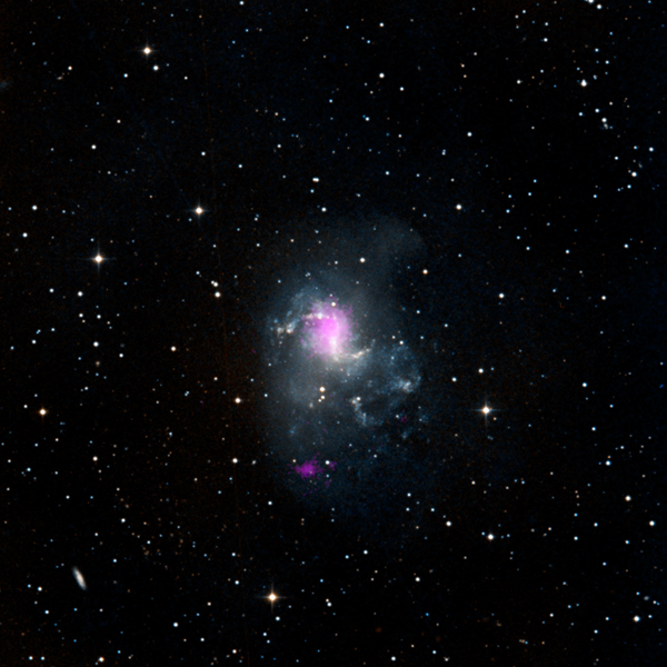 The magenta spots in this image from NASA's NuSTAR show two black holes in the spiral galaxy called NGC 1313, or the Topsy Turvy galaxy, located about 13 million light-years away in the Reticulum constellation.