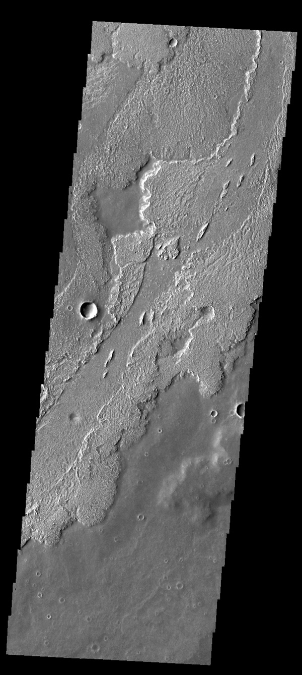 This image from NASA's 2001 Mars Odyssey spacecraft shows lava flows in Daedalia Planum.